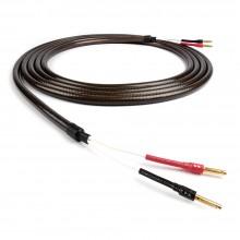 코드컴퍼니 에픽 스피커케이블 / Epic Speaker Cable / 스피커케이블